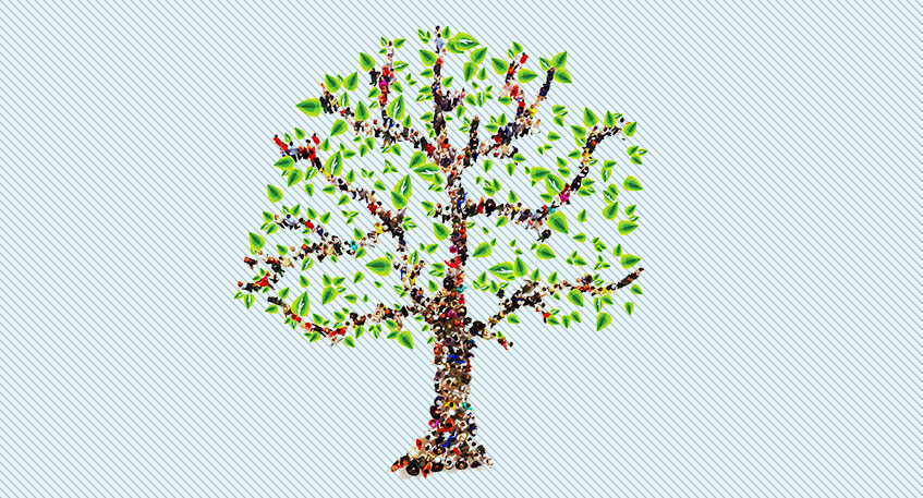 beginners tips for creating an online family tree