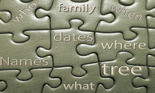 genealogy newbie tips for beginners